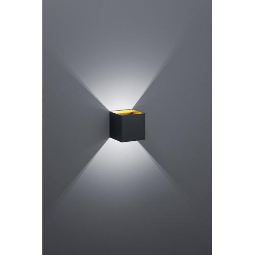 TRIO LIGHTING FOR YOU 22310132 LOUIS Fali lámpa